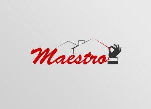 Web3D | מיתוג | עיצוב לוגו: למערכת Maestro של CDI